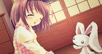 image_emys