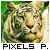 bouton5050-pixels-paradise