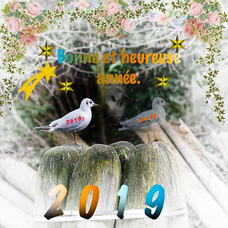 Cartes de vœux 2018/2019 290a9f097b061f974fd4