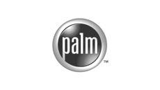 Palm Coques