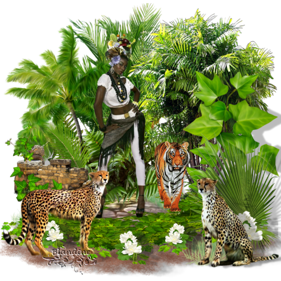 Dans_la_jungle_Cloclo.png